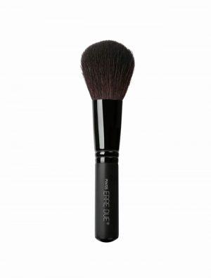 Professional Powder Brush PW05